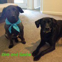 Dirk and Sasha
