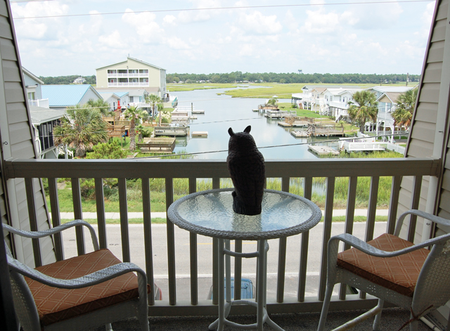 Myrtle Beach Long Term Rentals By Owner