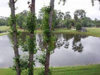 Heron Lake 3232