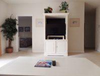 19 - 11.19 - Living Room (4) - Ironwood 1313