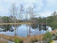 Teal Lake 422
