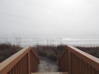 23 - 1.19 - Carolina Dunes 403