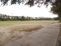 28 - 11.19 - Back Yard (2) - Ironwood 1313