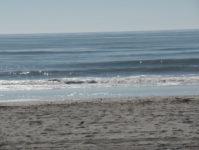64 - 10.19 - Beach (8) - Shalimar 8C