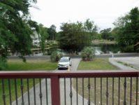 Latt-turtle-pond-view